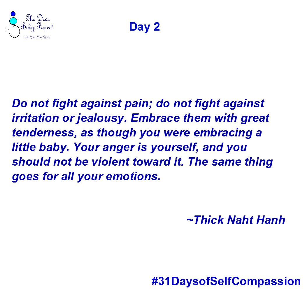 do not fight against pain; do not fight against Irritation or Jealousy. Embreace them with great tenderness, as though you were embracing a little baby. Your anger is Yourself and you should not be violent toward it. The same thing goes for all your emotions. Thick Naht Hanh