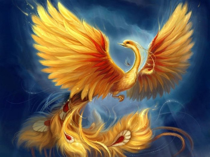 a phoenix. a birth with it's huge wings spread wide, head facing left. The wings are yellow, orange and red, to symbolize fire. bird is drawn on a blue background